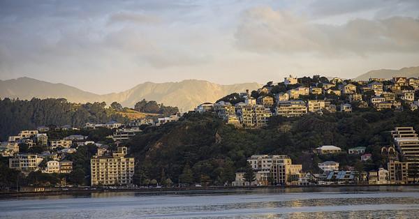 Wellington in the golden hour