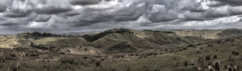 On the Whangara Rd, north of Gisborne.