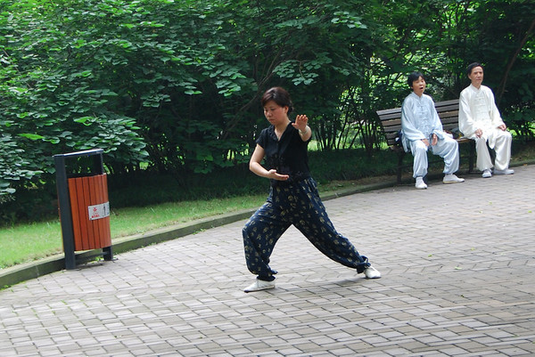 Aikido in the Park