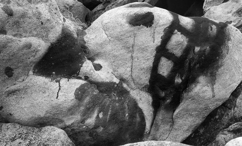 Spray-painted rock at Dan's Rock overlook