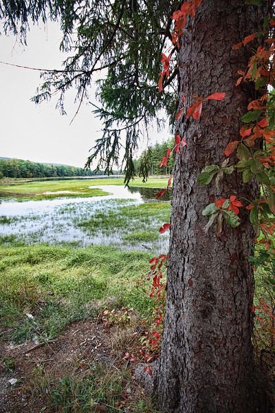 Brush Valley Reservoir