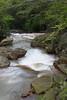 Downstream from Douglas Falls outside of Thomas, WV