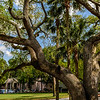 Oaks at Hilton Head, SC