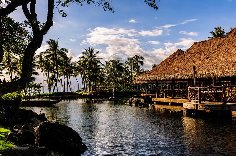 Hawaii2014_1275