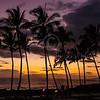 Hawaii2014_1324