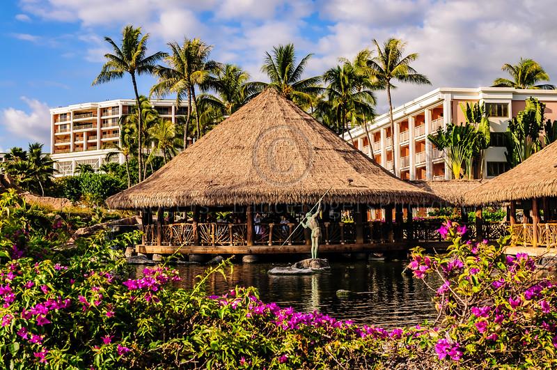 Hawaii2014_1280