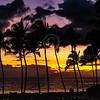 Hawaii2014_1328