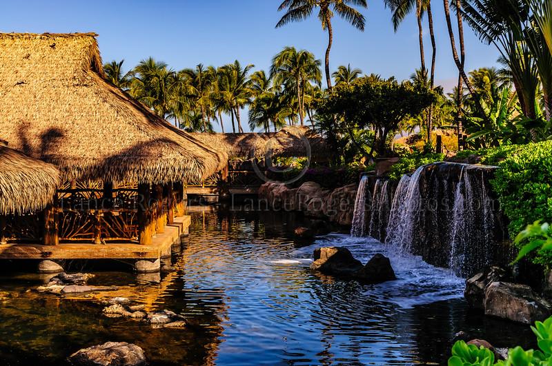 Hawaii2014_1383