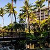 Hawaii2014_1389