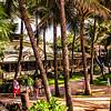 Hawaii2014_862