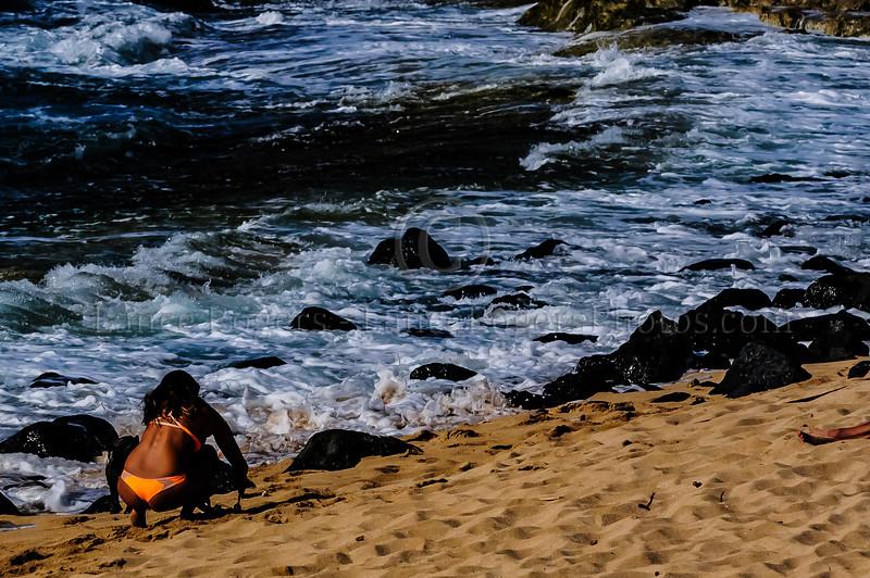 Hawaii2014_1003