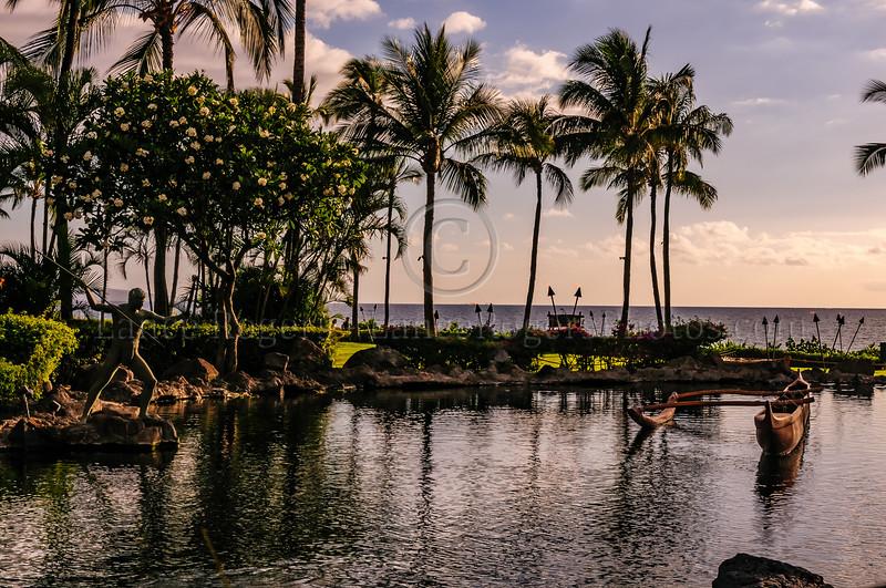 Hawaii2014_1291