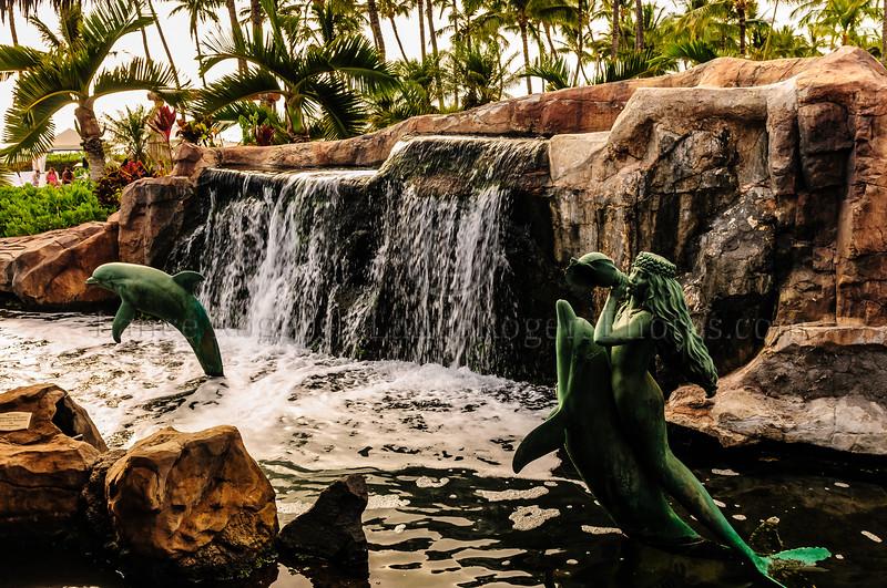 Hawaii2014_1281
