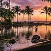 Humuhumunukunukuapua'a, Grand Wailea, Maui