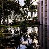 Hawaii2014_505