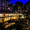 Hawaii2014_1360