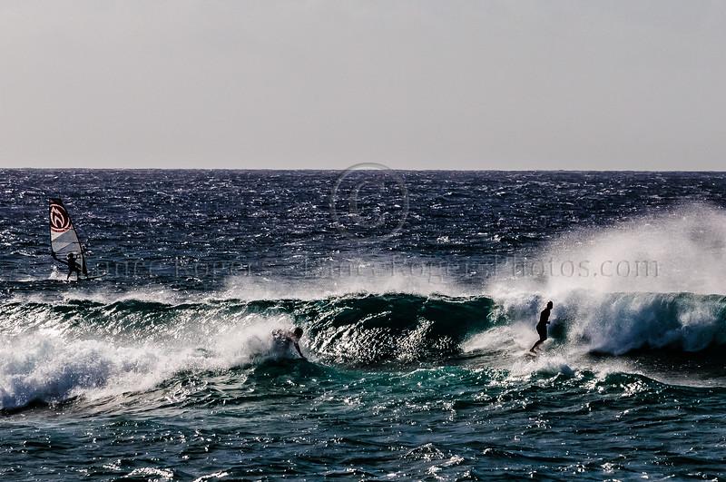Hawaii2014_1018