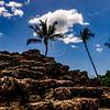 Hawaii2014_808