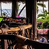 Hawaii2014_1290