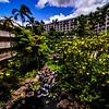 Hawaii2014_784