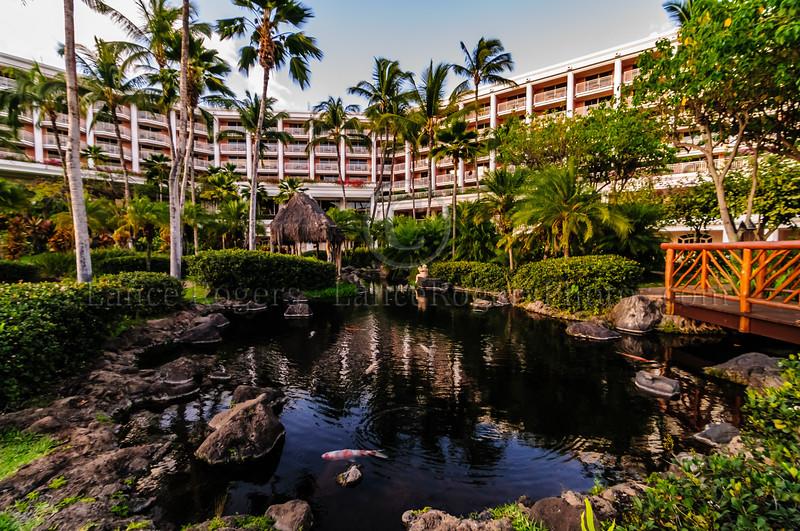Hawaii2014_478