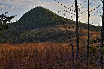 Forked Mountain - Ouachita National Forest