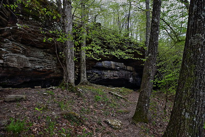 Alum Cove Natural Bridge - Ozark National Forest