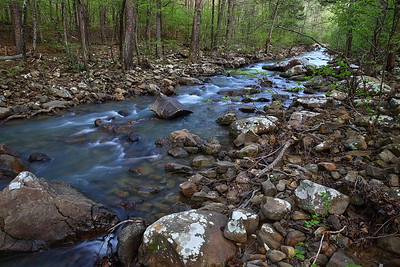 Cedar Creek - near Forked Mountain - Ouachita National Forest