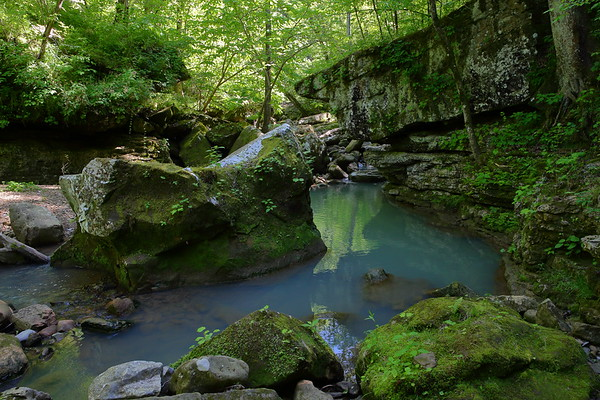 On the trail to Big Creek Cave Falls - Ozark National Forest