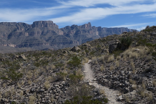 Sierra Del Carmen Mountains from the Marufo Vega Loop Trail - Big Bend National Park - Texas