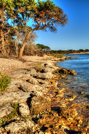 Late afternoon light along the shore at Lake Whitney.