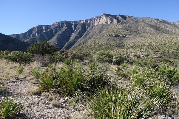 El Capitan - Guadalupe Mountains National Park, Texas
