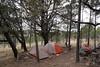 McKittrick Ridge Campsite