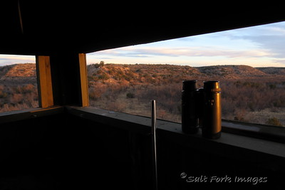 Rifle and binoculars at sunrise - near Aspermont, TX
