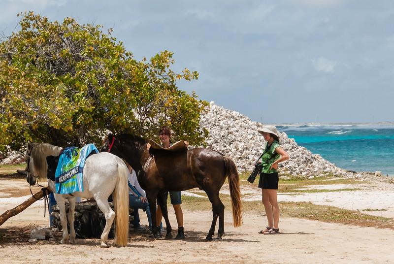 Kathy checks out local horseback riding oppurtunities
