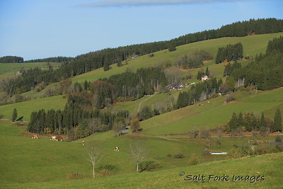 Farmland in The Black Forest