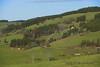 Farmland in The Black Forest