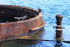 Part of the USS Arizona is still visible above the water.  The memorial straddles the sunken ship.