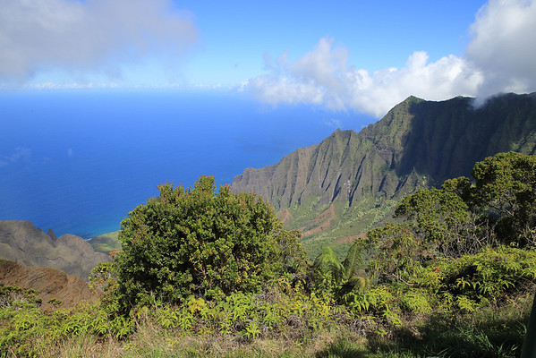 The northwest coast of Kuaui from high above.