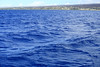 That was some seriously blue water.