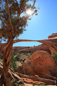 Landscape Arch - Arches National Park - near Moab, Utah