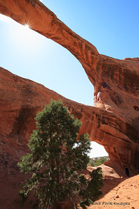 Double-O Arch
