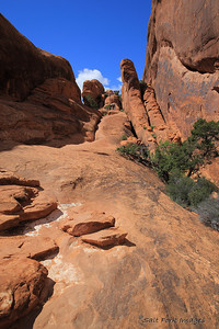 Slickrock trail in Arches National Park