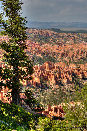 Welcome to Bryce Canyon National Park, Utah.