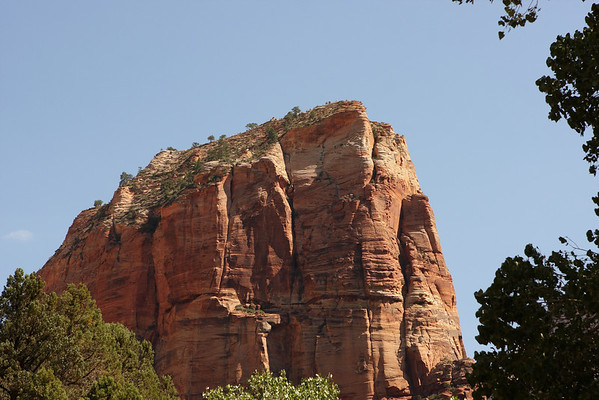 Angel's Landing.  I was up there!