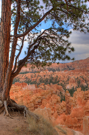 Along the rim trail at Sunset Point.