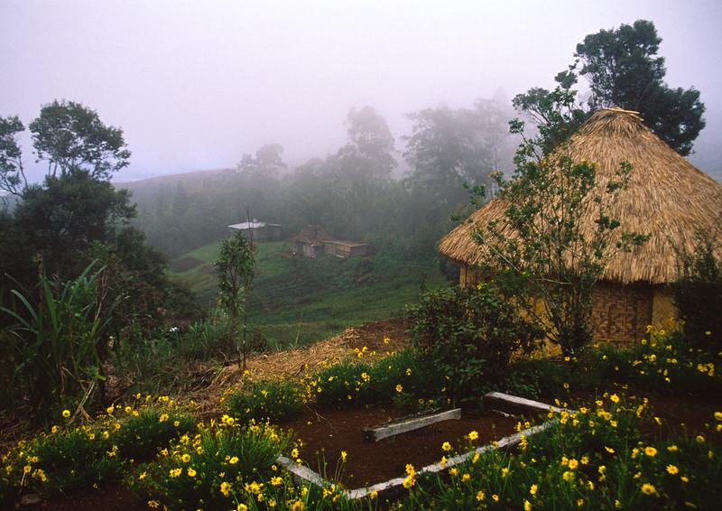 Womens hut, Mt. Hagen