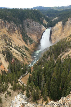 Lower Falls of the Yellowstone River - YNP