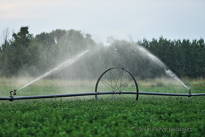 Irrigation:  the lifeblood of Teton Valley, Idaho