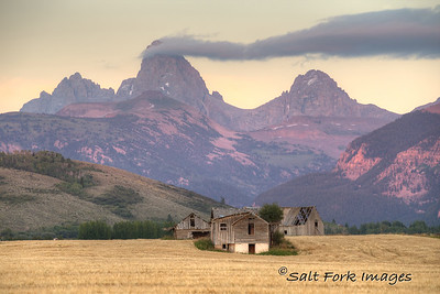 Amber waves of grain and purple mountains:  THIS is why I love Teton Valley, Idaho!